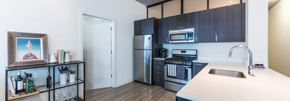 1345 S Wabash Ave, unit 709 is a modern South Loop 2 bed 2 bath condo - Kitchen