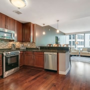 60 E Monroe Unit 1608, Chicago IL